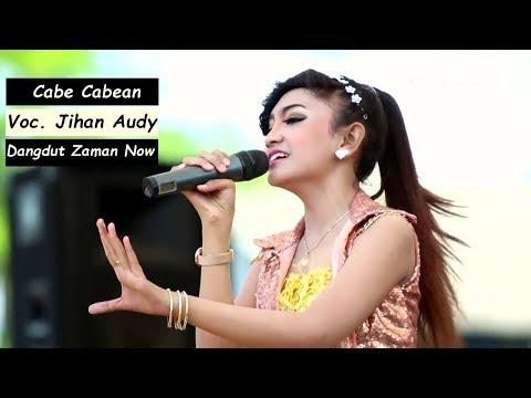LAGU Dangdut Koplo Terbaru - Jihan Audy Cabe Cabean