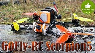 ✔ GOFly-RC Scorpion5 - FPV Квадрокоптер для Фристайла! фото
