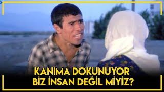 Talihli Amele - Mehmet Ali Sonunda Çıldırıyor!
