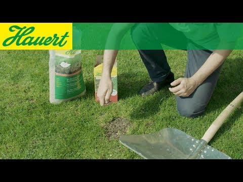 Hauert Ha-Ras Saat- und Herbstdünger (20kg)