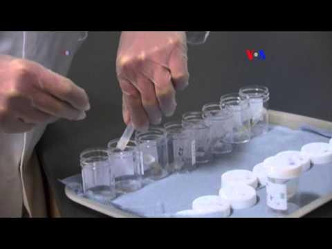 Máquinas para el tratamiento eficaz de prostatitis