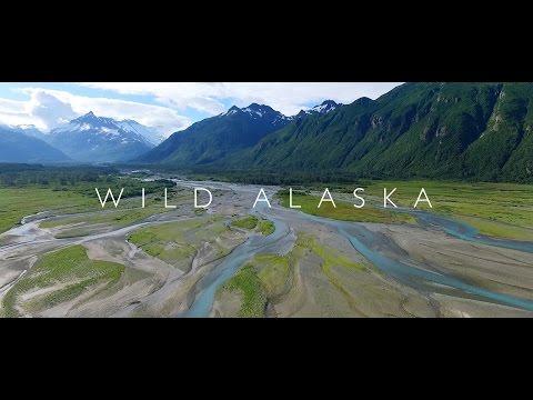 סרטון מרתק המתעד את נופי הפרא של אלסקה