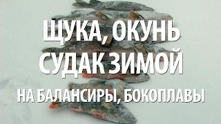 Ловля хищной рыбы на днепродзержинском водохранилище