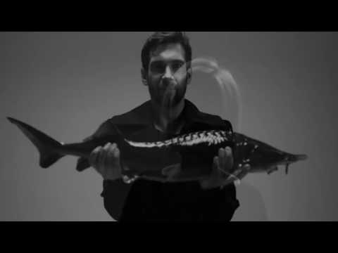 ESTRADARADA – Вите надо выйти Rakurs & Dj Andy Light Remix  DVJ GNOM VIDEOEDIT