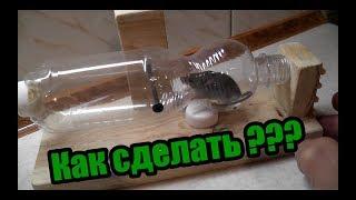 Как сделать мышеловку из пластиковой бутылки !!!