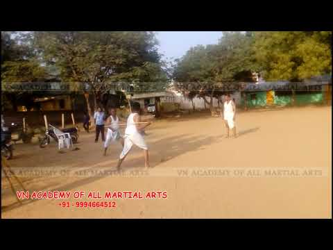 VNP Academy Of All Martial Arts