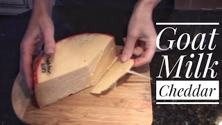 Goat Milk Cheddar - Cheesemaking At Home