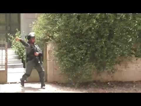 """צה""""ל הסתיר מהציבור 3,000 אירועי טרור"""