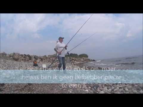 Kantvissen op Langeland, Keldsnor Fyr