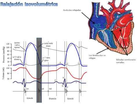 El estándar de oro del tratamiento de la hipertensión