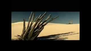 Apocalyptica Faraway Instrumental