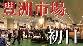 初日の豊洲市場に潜入してみた!2018.10.11築地から移転した中央卸売市場!tokyo