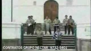 Grupo Nectar - El Arbolito - Www.bateriafina.org