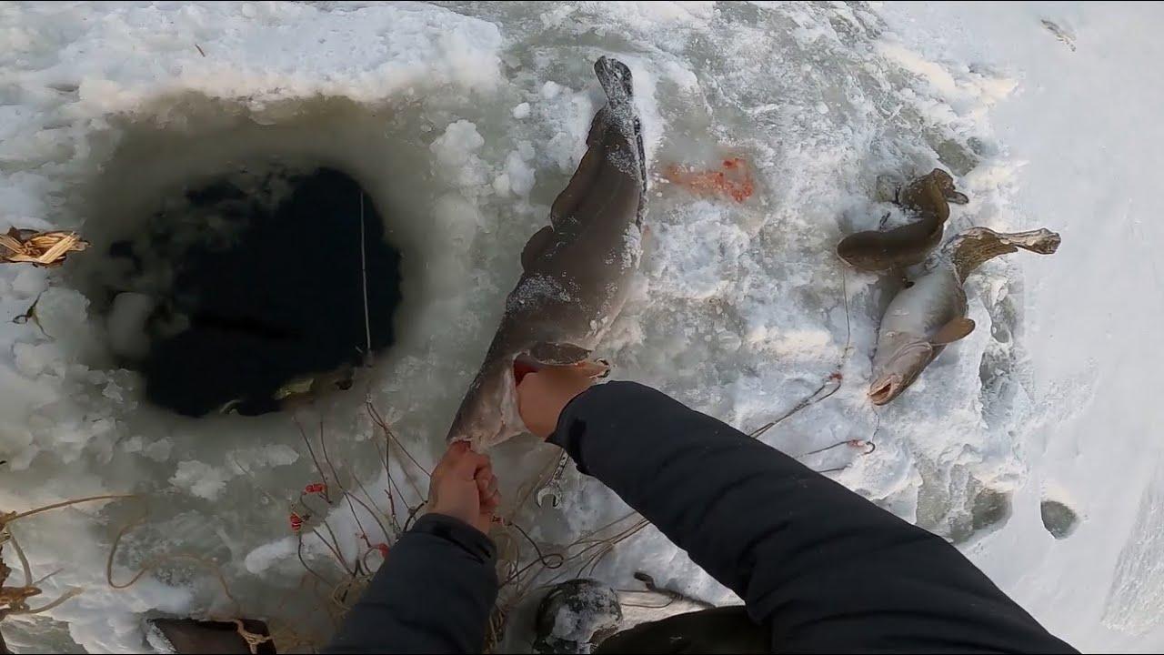 летняя рыбалка на севере