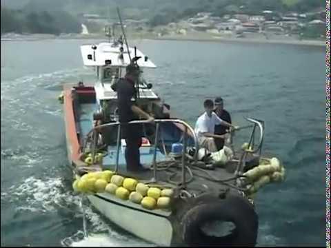 해양문화유산조사 다큐 - 만재도