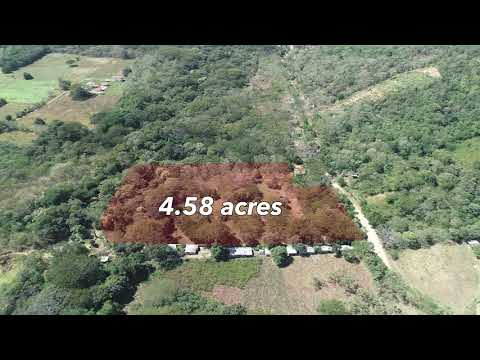 Marsella Commercial Acreage