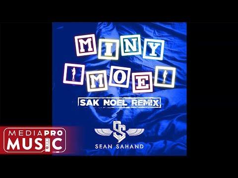 Sean Sahand - Miny Moe (Sak Noel Remix)