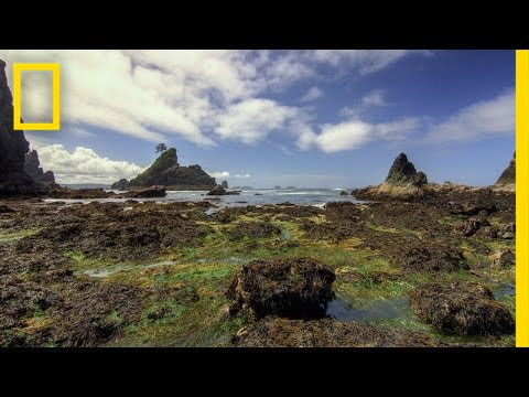 Olympic National Park   America's National Parks thumbnail