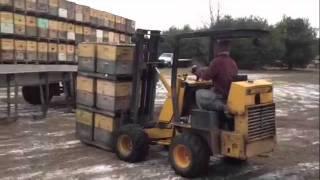 Honeybee Roundup at Sleeping Bear Farms