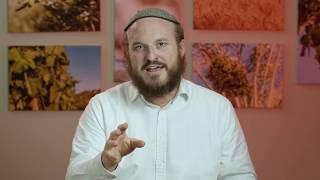 Parshat Va'yechi - Yaakov Lived