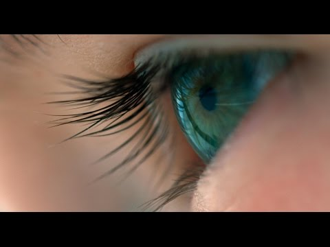 Voyage of Time Voyage of Time (Japanese Trailer)