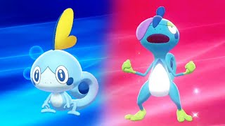 Drizzile  - (Pokémon) - ⚔️ Pokémon Sword & Shield 🛡️ - Sobble Evoles Into Drizzile