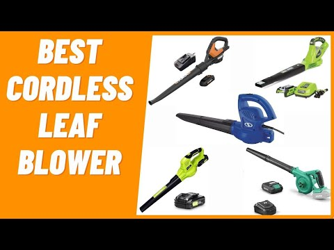 Best Cordless Leaf Blower To Buy in 2021 (Light Weight Leaf Blower)