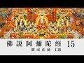 [Mandarin] 佛說阿彌陀經 - 國語普通話 - 第十五講 - 觀成法師主講