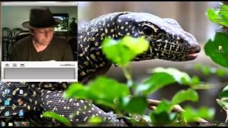 Oczyma Reptilian cz.3 – ZALWIT