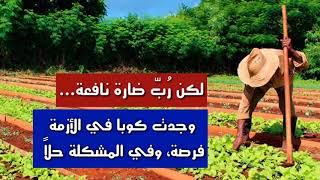 كيف نجحت الزراعة البيئية في ...