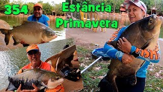 Programa Fishingtur na Tv 354 - Estância Primavera