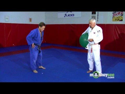 Basic Judo - Falling