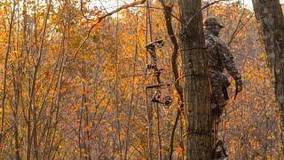 Best Deer Hunting Strategy