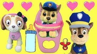 Capitulo Especial Paw Patrol En Español: Chase Y Skye De Patrulla Canina. San Valentin 2019 / 1 Hora