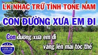 karaoke-lien-khuc-nhung-bai-hat-tru-tinh-tone-nam-hay-nhat-con-duong-xua-em-di-vung-la-me-bay