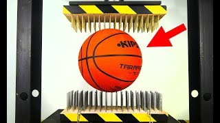 BASKETBALL BETWEEN NAIL BEDS (HYDRAULIC PRESS EXPERIMENT)