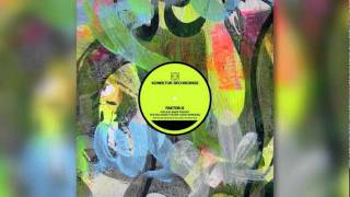 Faktor-X - The Big Bass Theory (Dub Version)