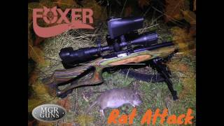 Rat Busting & Rabbit Shooting With A Ruger 10/22 Semi Auto .22LR