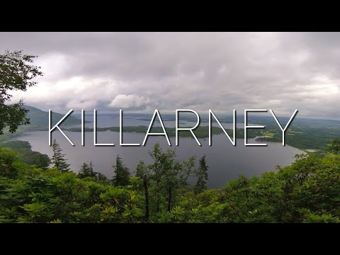 Vlog #14: Killarney, Ireland || EXPLORING THE NATIONAL PARK