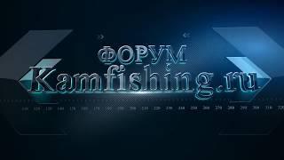 Рыбалка отчеты форумы