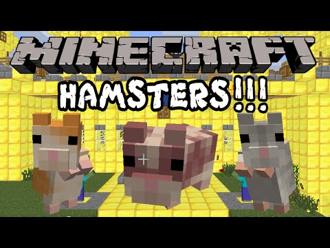 minecraft redstonia ep8 hamsters mod showcase hamsterrific