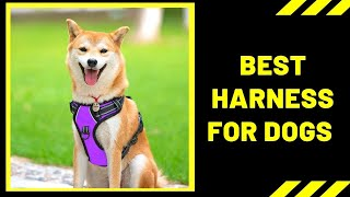 Dog Harness: Best Harness For Dogs 2020 Reviews
