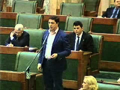 Senat - sedinta din 12-03-2013