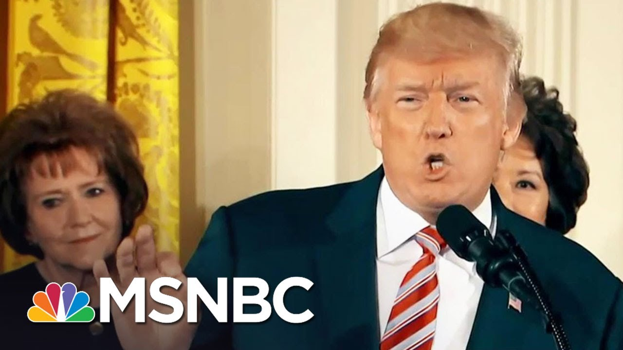 All Of President Donald Trump's Lies | The Last Word | MSNBC thumbnail