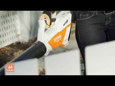 Stihl BGA 45 in Purvis, Mississippi - Video 1