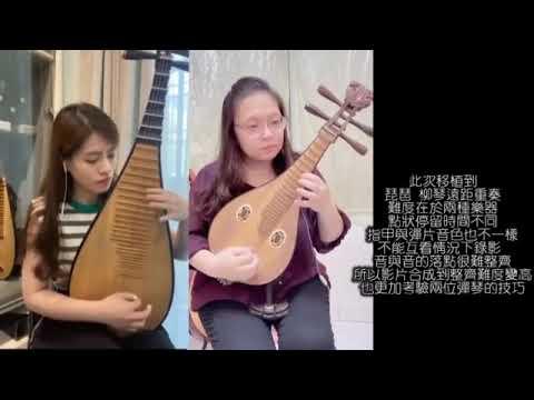 【表藝如果電話亭】臺南市民族管絃樂團—琵琶&柳琴 遠距合奏