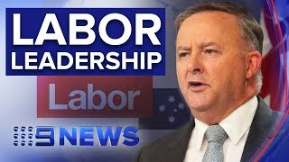 Anthony Albanese to become Labor leader | Nine News Australia