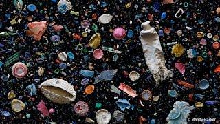 Ocean Rubbish - Behind the News