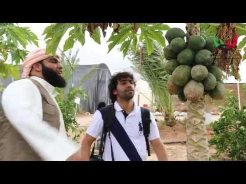 مزرعة وقفية في الصومال - جمعية الإغاثة الإنسانية