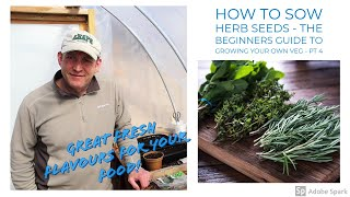 How to Sow Herb Seeds - The Beginner's Guide to Growing Your Own Veg Part 5